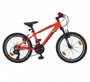 DINOTTI Mountainbike X1017 20´´ Boy